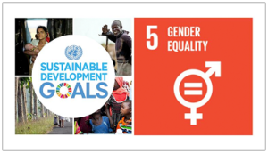 Sustainable Development Goals No 5 Gender Equality